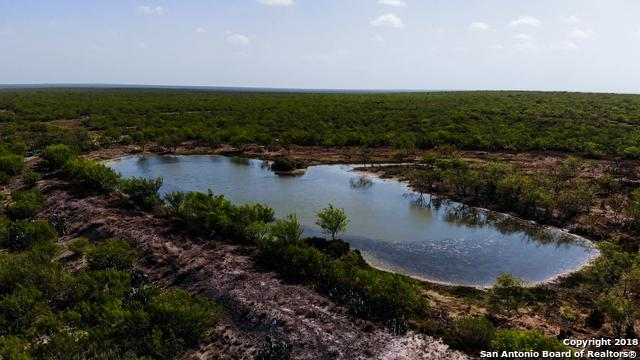 1901 North Pintas-Adami Road, Laredo, TX 78019 (MLS #1324757) :: Tami Price Properties Group
