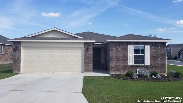 202 Golden Fawn, Selma, TX 78154 (MLS #1324984) :: Tami Price Properties Group