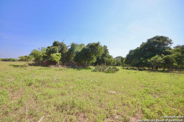 1119 County Road 307, Floresville, TX 78114 (MLS #1325154) :: Neal & Neal Team
