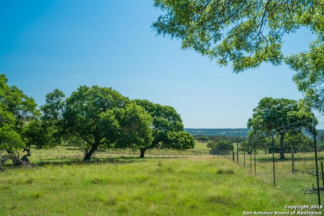 6867 S Us Highway 87, Fredericksburg, TX 78624 (MLS #1325304) :: Alexis Weigand Real Estate Group
