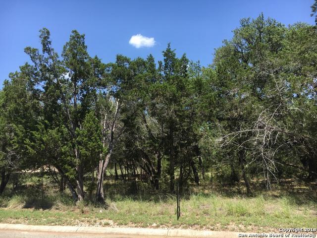 27822 Bogen Rd, New Braunfels, TX 78132 (MLS #1325511) :: Exquisite Properties, LLC