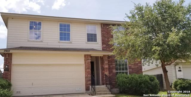 3907 Blue Oak Pass, San Antonio, TX 78223 (MLS #1325713) :: Exquisite Properties, LLC