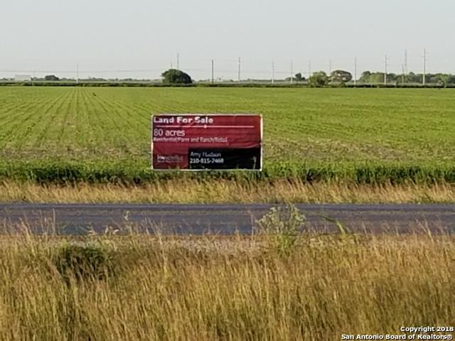 0 State Highway 44, Robstown, TX 78380 (MLS #1325718) :: Alexis Weigand Real Estate Group