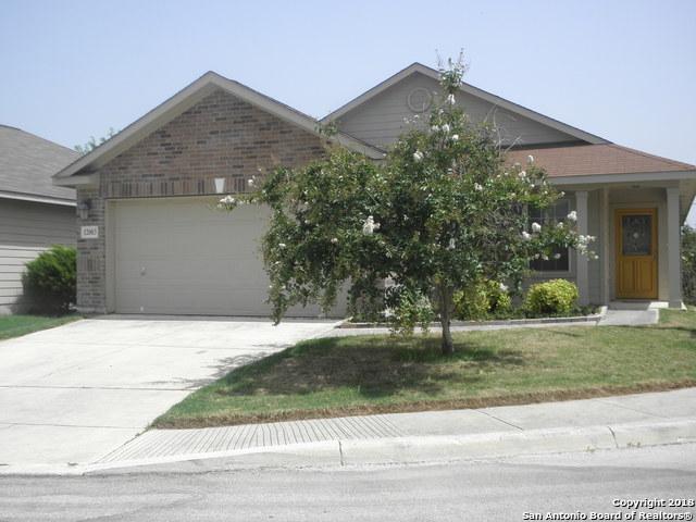 12003 Mill Pne, San Antonio, TX 78254 (MLS #1325933) :: Tami Price Properties Group