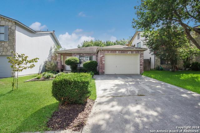 15511 Cross Vine, San Antonio, TX 78247 (MLS #1325977) :: Tom White Group