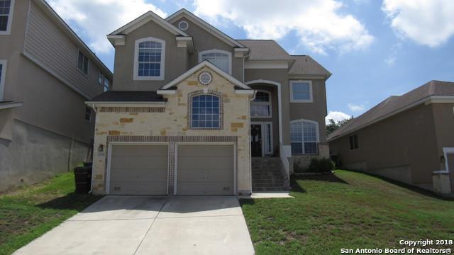 26218 Raven Feather, San Antonio, TX 78260 (MLS #1325992) :: Exquisite Properties, LLC