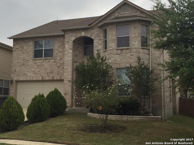 706 Barrow Peak, San Antonio, TX 78251 (MLS #1326059) :: Tami Price Properties Group