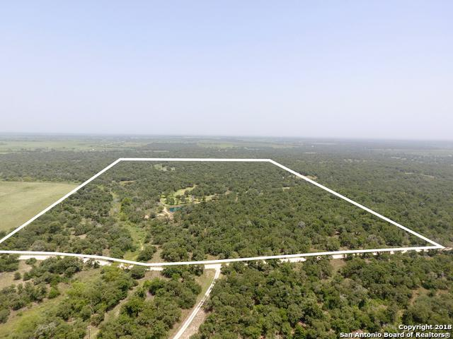 0 County Road 437, Stockdale, TX 78160 (MLS #1326233) :: Alexis Weigand Real Estate Group