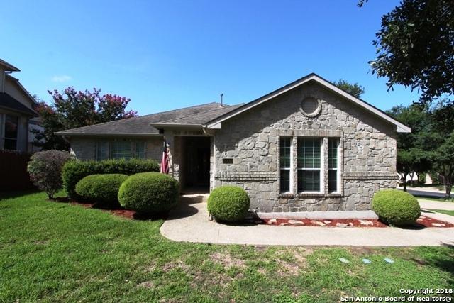 20516 Wind Springs, San Antonio, TX 78258 (MLS #1326318) :: Tami Price Properties Group