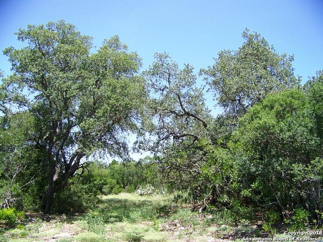 LOT 2A County Road 473, Castroville, TX 78009 (MLS #1326418) :: Tom White Group