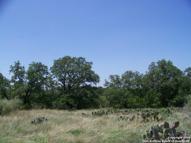 LOT 6 County Road 473, Castroville, TX 78009 (MLS #1326428) :: Tom White Group