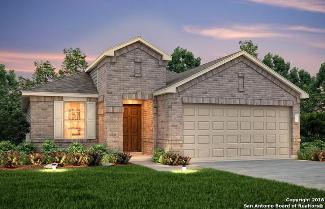 9917 Waddie Lane, San Antonio, TX 78254 (MLS #1326572) :: Alexis Weigand Real Estate Group