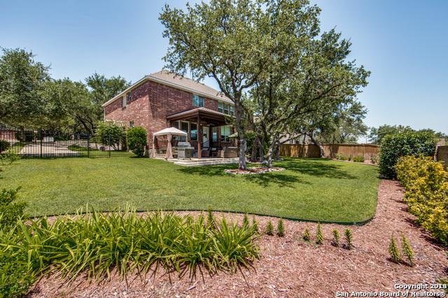 25814 Peregrine Ridge, San Antonio, TX 78260 (MLS #1326754) :: Tom White Group