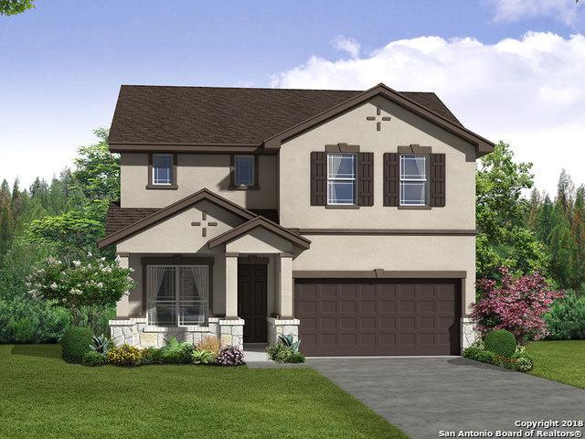 11630 Straight Tribute, San Antonio, TX 78254 (MLS #1326764) :: Exquisite Properties, LLC