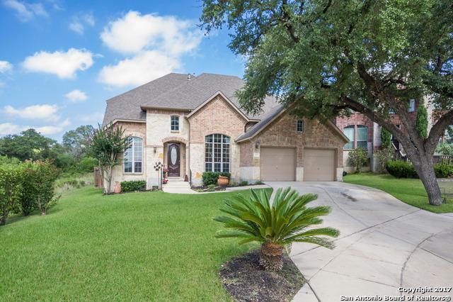 9110 Arroyo Hondo, Helotes, TX 78023 (MLS #1326773) :: Ultimate Real Estate Services