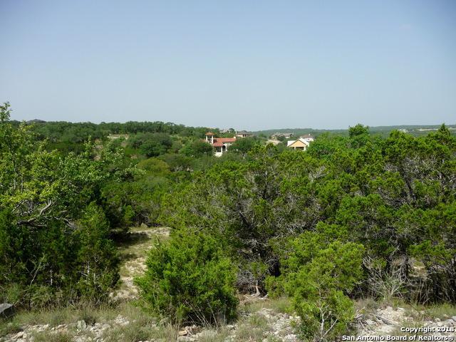 2100 Bella Vista, Canyon Lake, TX 78133 (MLS #1326902) :: Magnolia Realty