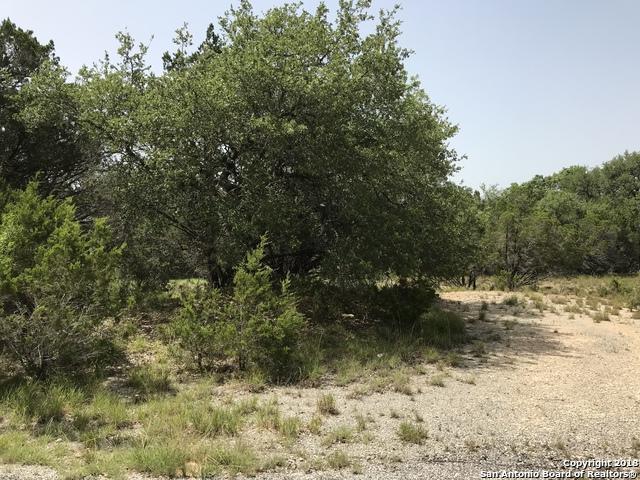 LOT 163 AND 164 Clearcreek Dr, San Antonio, TX 78133 (MLS #1327084) :: Vivid Realty