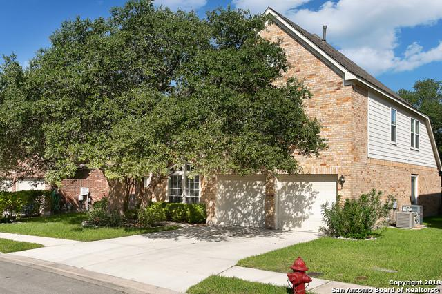 20207 Standish Rd, San Antonio, TX 78258 (MLS #1327220) :: Alexis Weigand Real Estate Group