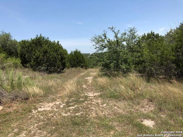 140 Longwood, New Braunfels, TX 78132 (MLS #1327320) :: Ultimate Real Estate Services