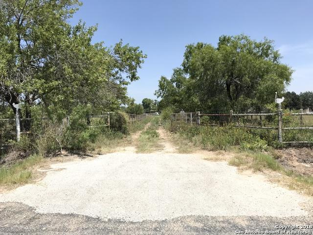 11195 Briggs Rd, Atascosa, TX 78002 (MLS #1327326) :: Tom White Group