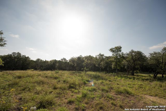 124 Wellesley Loop, Shavano Park, TX 78231 (MLS #1327440) :: Exquisite Properties, LLC