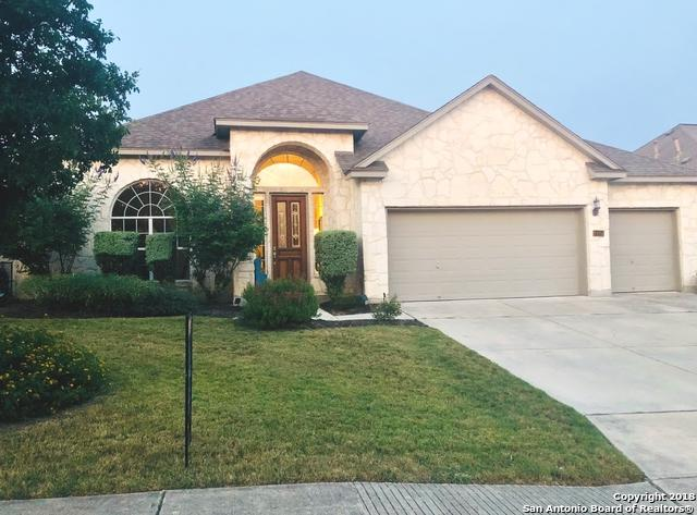 24914 White Creek, San Antonio, TX 78255 (MLS #1327817) :: The Castillo Group
