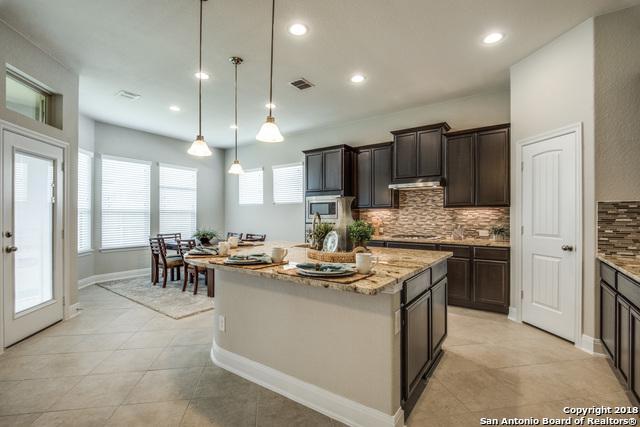 25707 Berberis, San Antonio, TX 78261 (MLS #1328003) :: Exquisite Properties, LLC