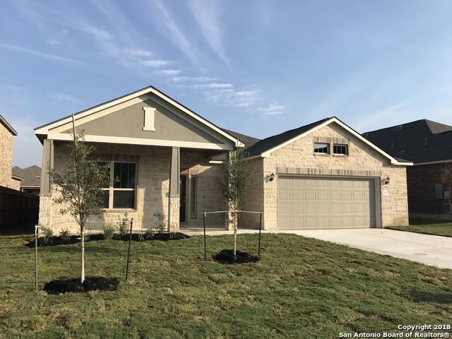 1407 Garden Laurel, New Braunfels, TX 78130 (MLS #1328483) :: Erin Caraway Group