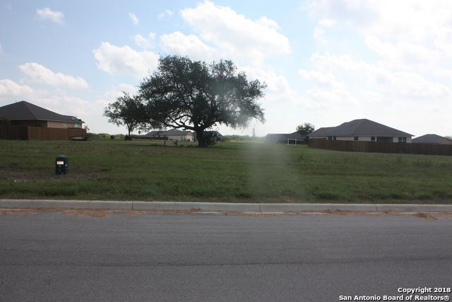704 Mariposa, Kenedy, TX 78119 (MLS #1328542) :: Alexis Weigand Real Estate Group