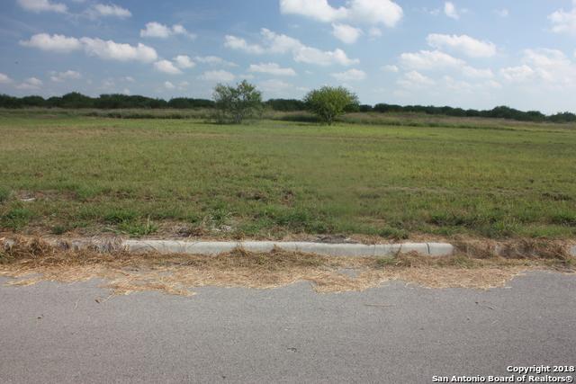 513 Sendera Way, Kenedy, TX 78119 (MLS #1328550) :: Alexis Weigand Real Estate Group