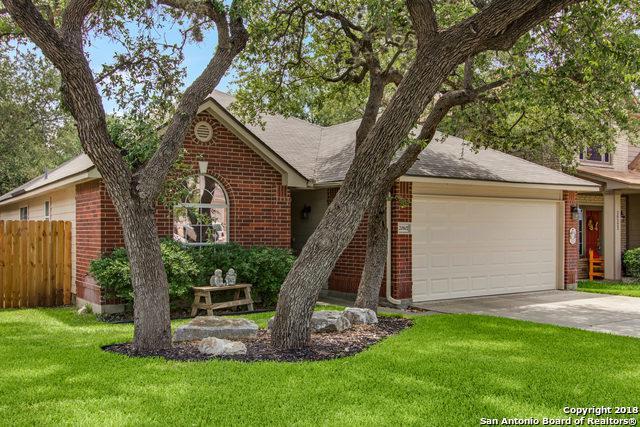 20602 Tree Mdw, San Antonio, TX 78258 (MLS #1328795) :: Alexis Weigand Real Estate Group