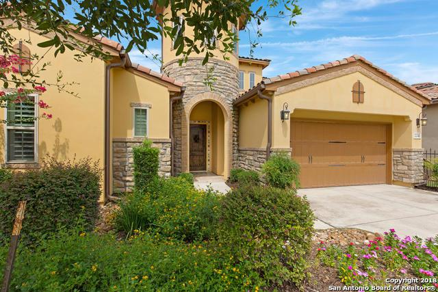22343 Viajes, San Antonio, TX 78261 (MLS #1328920) :: The Castillo Group