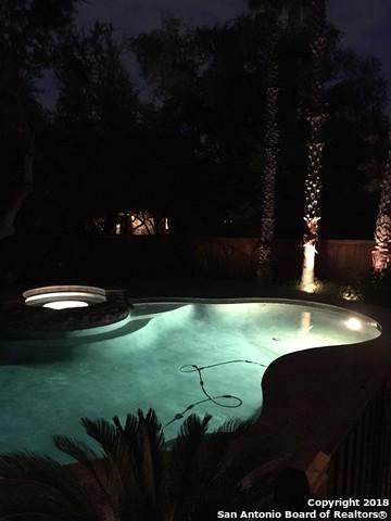 106 Candelaria, Helotes, TX 78023 (MLS #1329419) :: Exquisite Properties, LLC