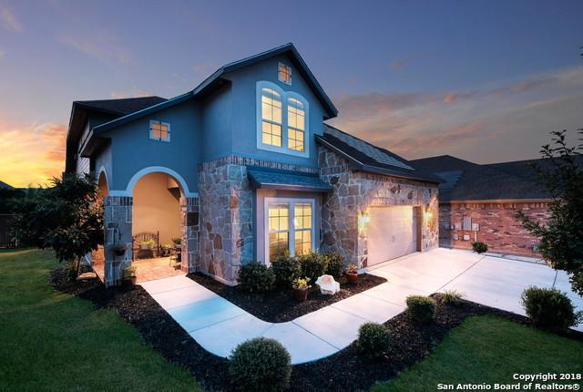 28419 Joanie Kay, San Antonio, TX 78260 (MLS #1329438) :: The Castillo Group
