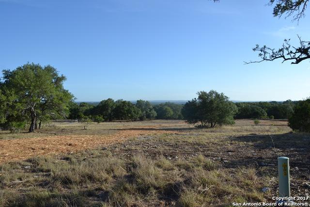 38 Verde Pt, Boerne, TX 78006 (MLS #1329506) :: Exquisite Properties, LLC
