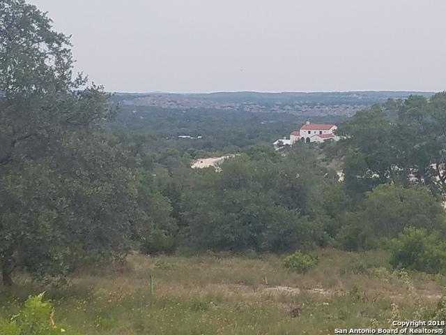 23203 Stallion Ridge, San Antonio, TX 78255 (MLS #1329635) :: Exquisite Properties, LLC