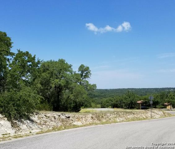 606 Angelica Vista, Canyon Lake, TX 78133 (MLS #1329783) :: Magnolia Realty