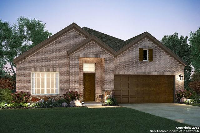 16311 Amistad Pass, San Antonio, TX 78247 (MLS #1329830) :: The Castillo Group