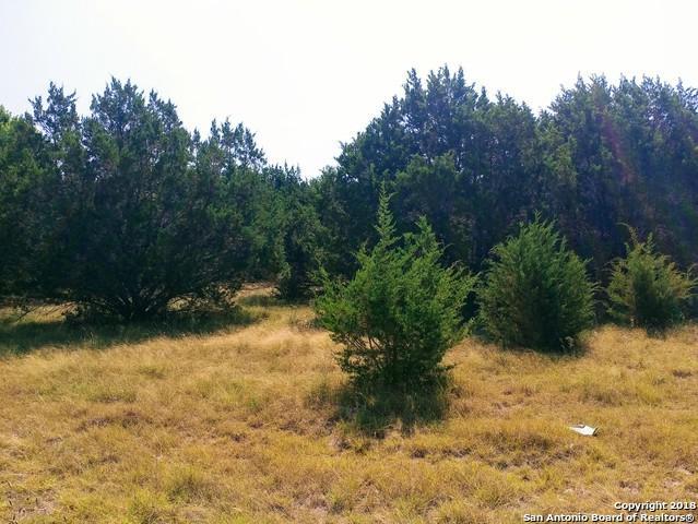 938 Long Meadow, Spring Branch, TX 78070 (MLS #1329930) :: The Castillo Group