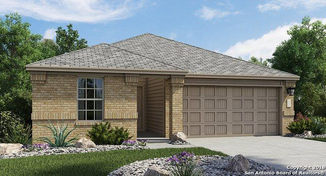 2421 Arctic Warbler, New Braunfels, TX 78130 (MLS #1329965) :: Alexis Weigand Real Estate Group
