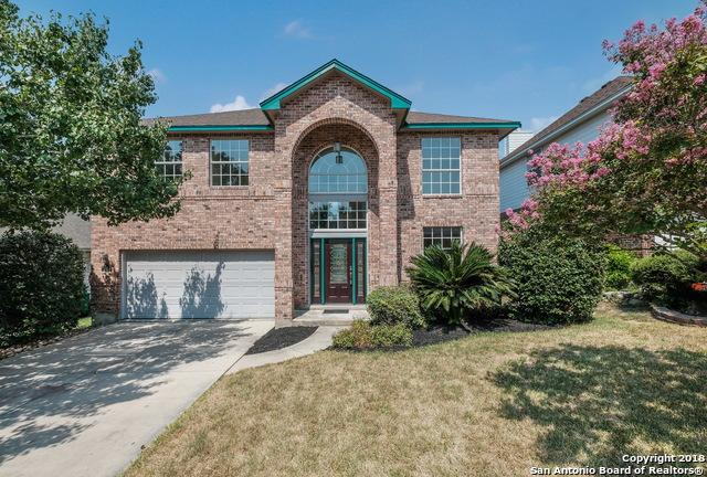 24939 Crescent Run, San Antonio, TX 78258 (MLS #1330005) :: Alexis Weigand Real Estate Group