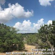 000 Fm 311, Spring Branch, TX 78070 (MLS #1330250) :: Ultimate Real Estate Services