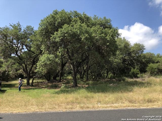 8449 Indian Hills Ln, Boerne, TX 78006 (MLS #1330482) :: Exquisite Properties, LLC
