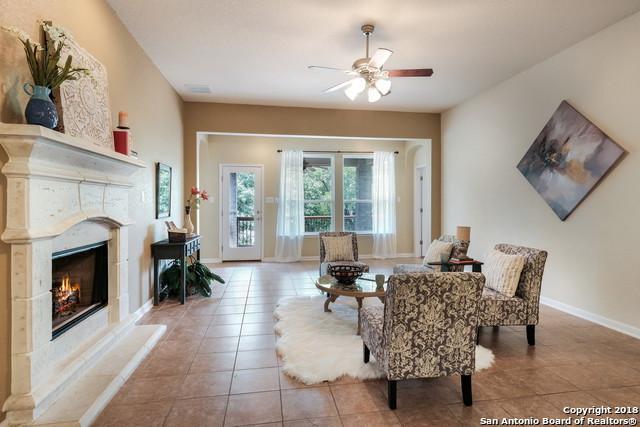 28927 Gooseberry, San Antonio, TX 78260 (MLS #1330785) :: The Castillo Group