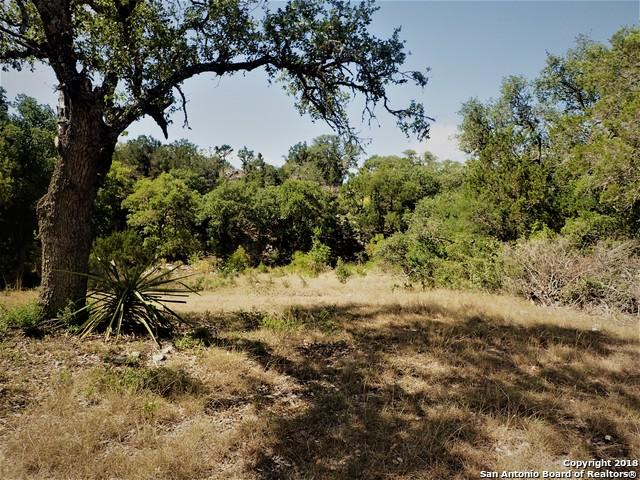 24 Pr 2534, Mico, TX 89056 (MLS #1330893) :: Alexis Weigand Real Estate Group