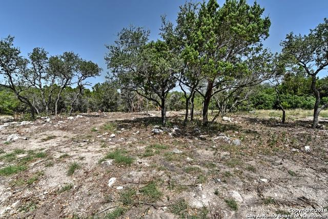 LOT 179 Cr 2815, Mico, TX 78056 (MLS #1330936) :: Alexis Weigand Real Estate Group
