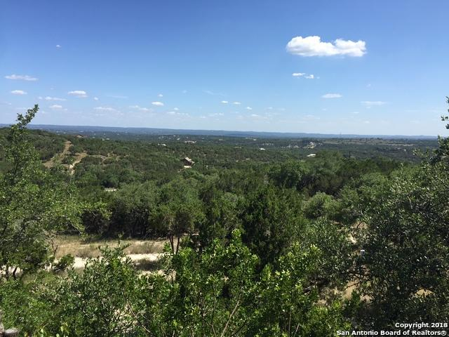 1177 Mount Moriah Dr, Spring Branch, TX 78070 (MLS #1330992) :: Alexis Weigand Real Estate Group
