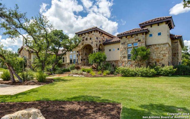 424 Menger Springs, Boerne, TX 78006 (MLS #1331012) :: Alexis Weigand Real Estate Group