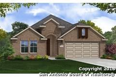 27911 Lokaya Falls, Boerne, TX 78015 (MLS #1331166) :: The Castillo Group