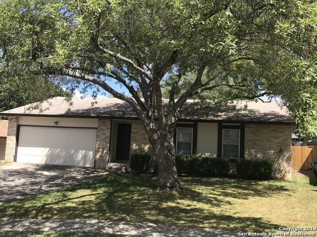 4946 Nuthatch St, San Antonio, TX 78217 (MLS #1331283) :: Magnolia Realty